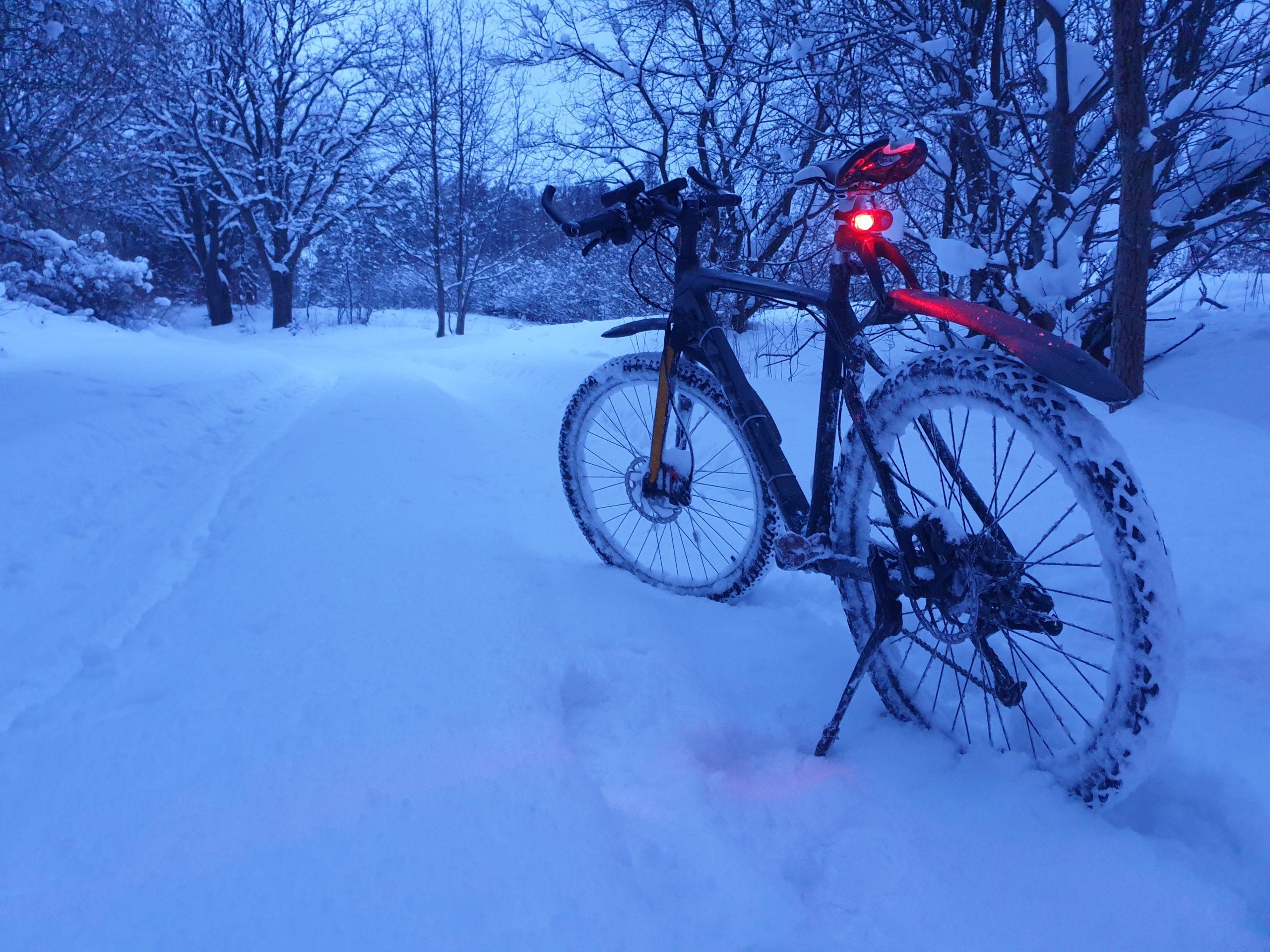 Rower w śnieżnej scenerii